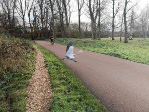 Run2Discover: Rotterdam - A TU RITMO