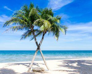 caribbean-1822544_640
