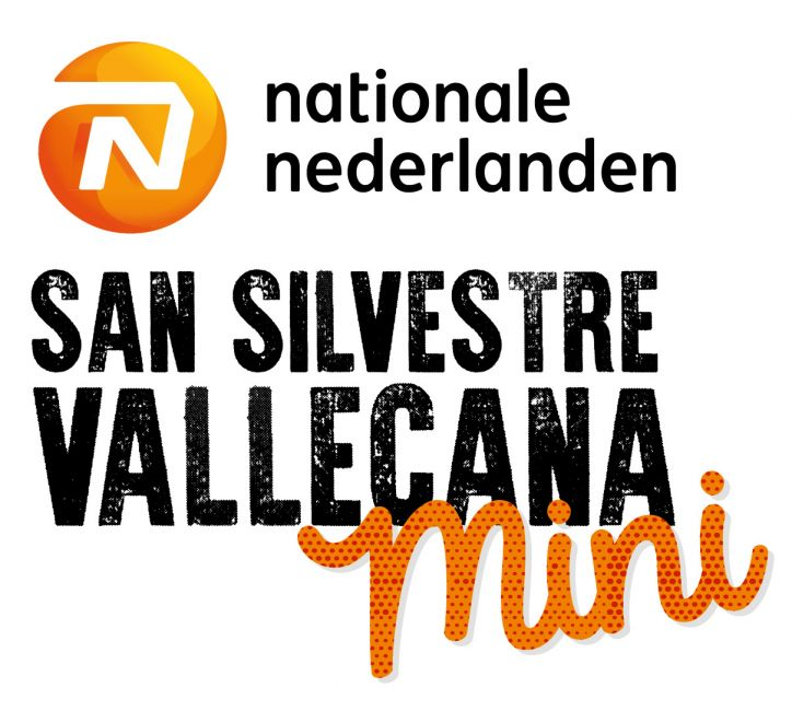 Logo_MiniSSV