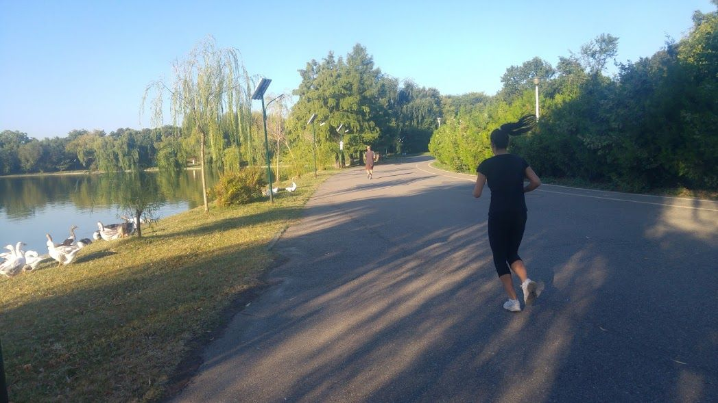 Bucarest 3 Parque Tinerului